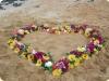 inima-flori
