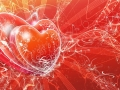 Inimia in forma de vector, imagine superba de dragoste